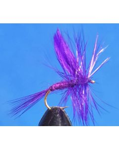 Deep Purple #12, 12st